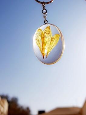 صورة ميدالية بيضاوية