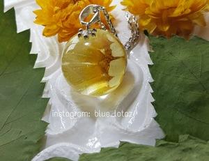 صورة قلادة كروية بزهرة تباع الشمس الجميلة.